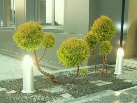 Postavljanje dekorativnog rastinja